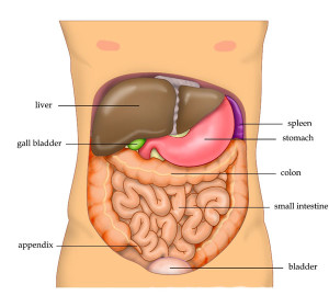 bp-spring-cleansing-liver